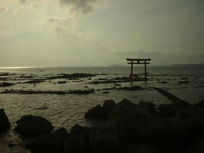 Photo_1112