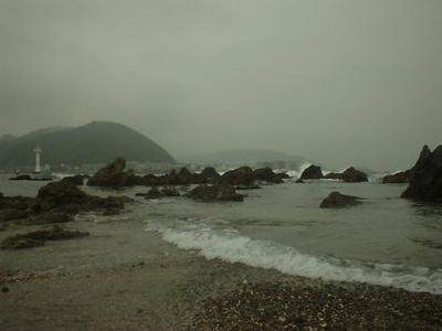 Photo_1146