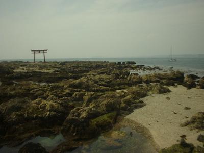 Photo_1206