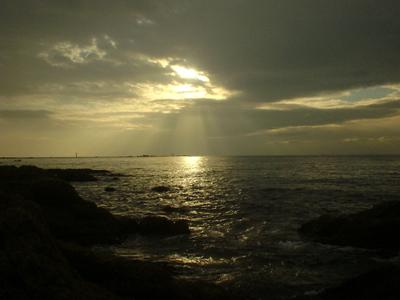 Photo_693