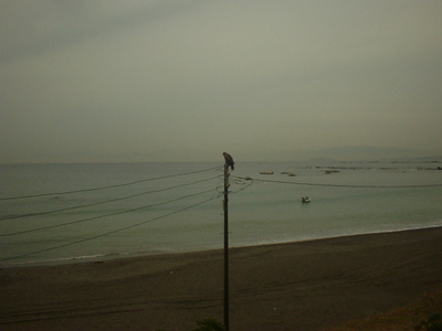 Photo_694