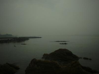 Photo_907